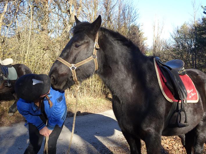 Un petit bisou d'Ambre du Percy à sa cavalière.
